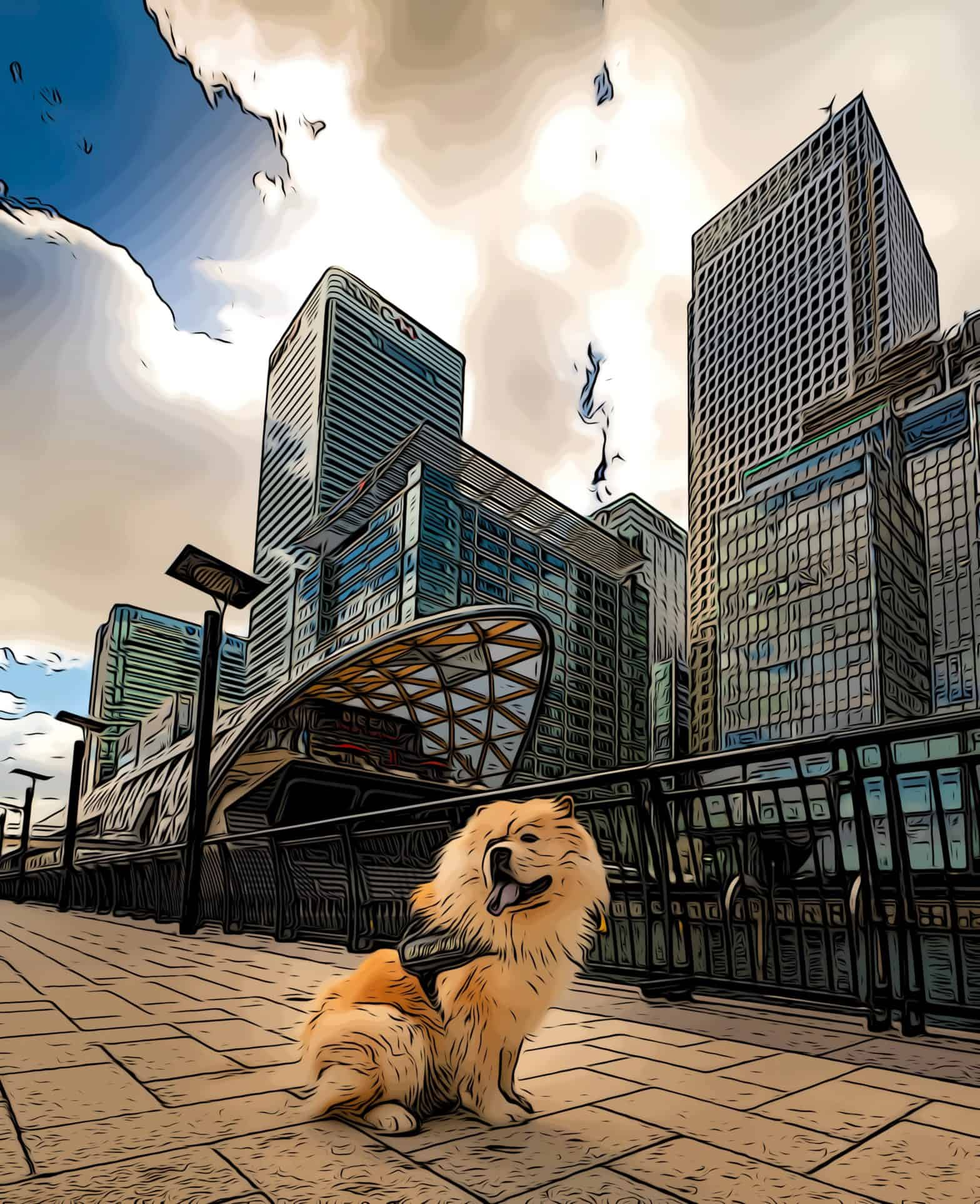 dog infront of canary wharf developments